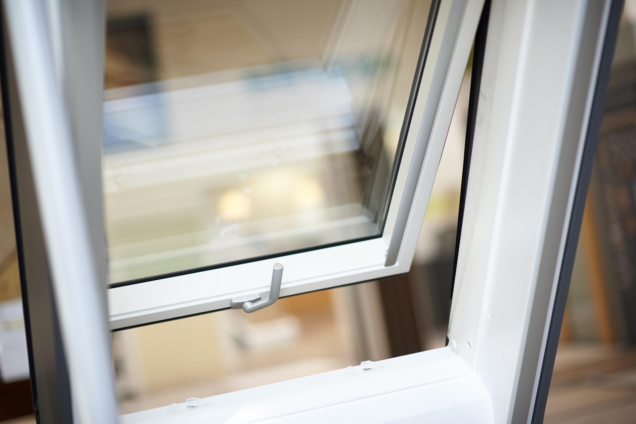 Dachfenster 002